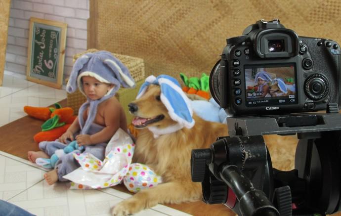 Animais fazem sucesso como modelos fotográficos  (Foto: Gshow/Rede Clube)