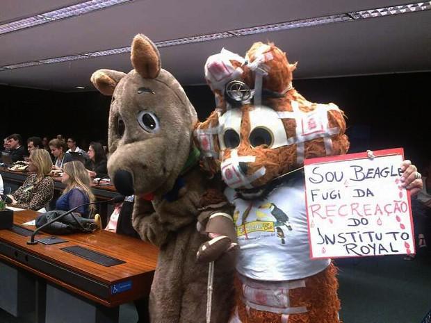 Ativistas se fantasiaram de animais para protestar contra supostos maus-tratos no Instituto Royal (Foto: Isabella Calzolari/G1)