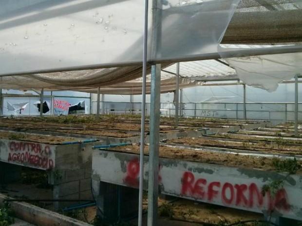 Além de destruíram pesquisa, elas também picharam local (Foto: Cláudio Nascimento/ TV TEM)