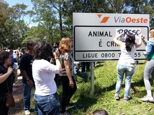 Manifestantes em defesa dos animais mudam placa orientação (Foto: Geraldo Nacimento/G1)