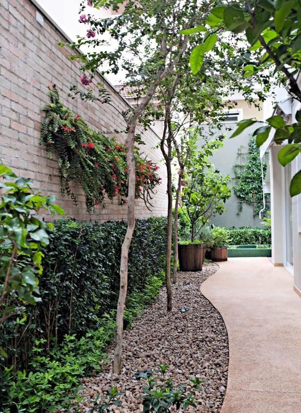 Como valorizar corredores com plantas casa e jardim paisagismo - Plantas de jardin fotos ...