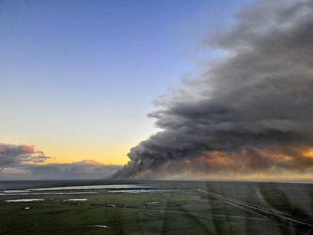 Fogo já atingiu uma área de 700 hectares na Estação Ecológica do Taim (Foto: divulgação/ICMBio)