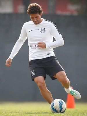 Elano, meia do Santos (Foto: Ricardo Saibun / Santos FC)