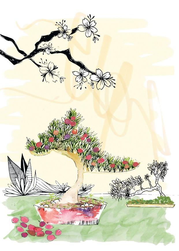 ananda-apple (Foto: Ilustração: Patrícia Sodré)