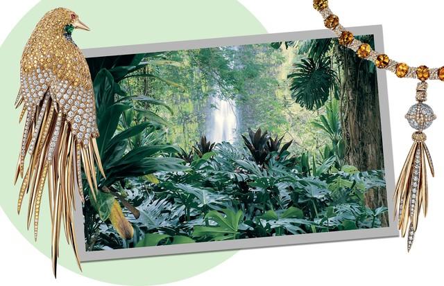 Natureza selvagem  (Foto: Frazer Harrison/Getty Images, Thinkstock e Divulgação)
