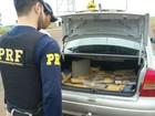 Jovem é preso transportando 189 kg de maconha em rodovia de MS