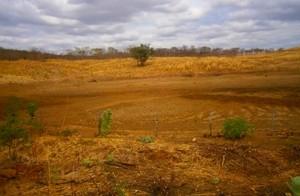 Açude secou por causa de clima da região. (Foto: Cicero Loiola/VC no G1)