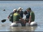 Técnicos colhem amostras de areia na região do santuário de Abrolhos