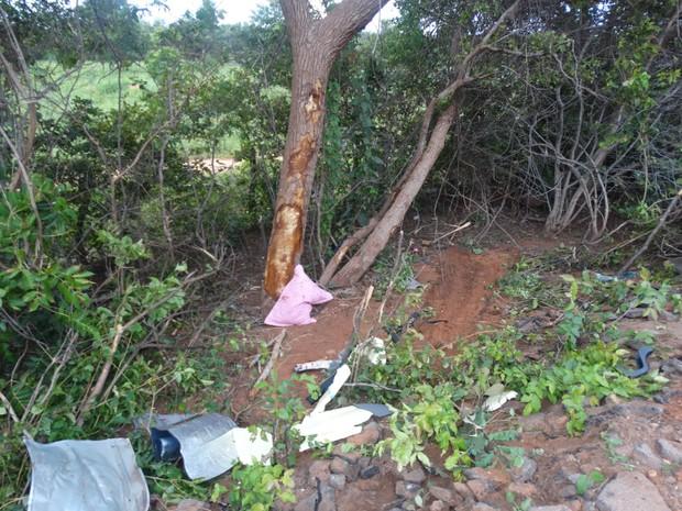 Local onde carro bateu contra uma árvore na BR-135, em Cristalândia do Piauí (Foto: Alessandro Guerra/reporteralessandroguerra.com)