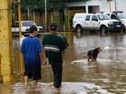 Saiba como ajudar as famílias prejudicadas pela chuva no RS