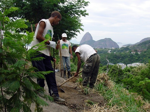 Desde 1987, Mutirão Reflorestamento recupera áreas de Mata Atlântica degradadas no Rio de Janeiro (Foto: Divulgação/ ASCOM/SMAC)
