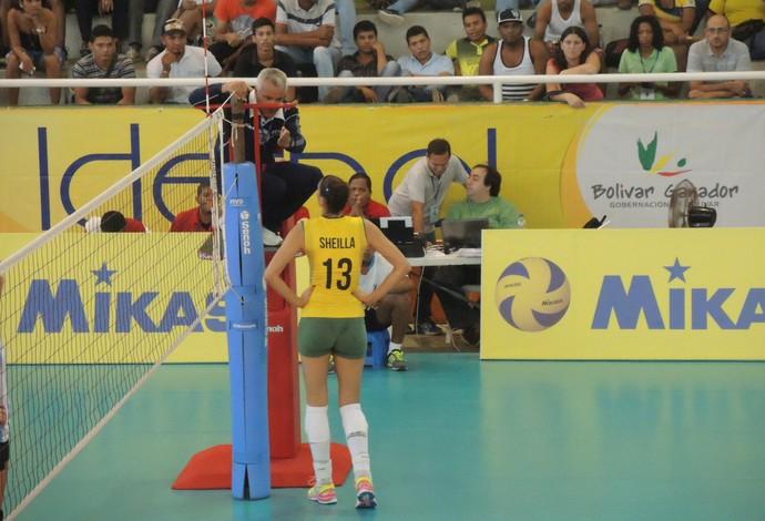 Sheilla Brasil vôlei Sul-Americano (Foto: Fabio Leme)