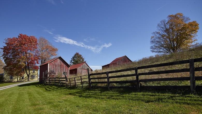fazenda (Foto: Pixabay)