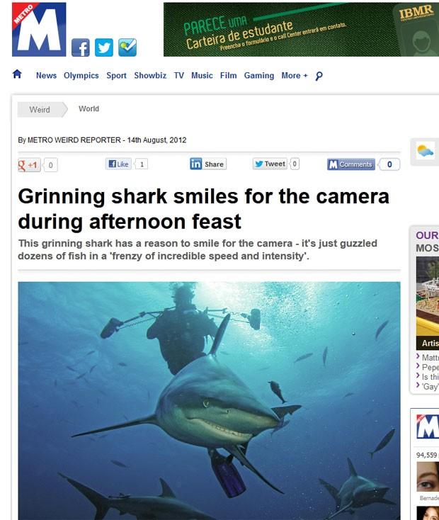 Tubarão 'sorri' ao ser fotografado no meio de cardume de sardinhas. (Foto: Reprodução/Metro)