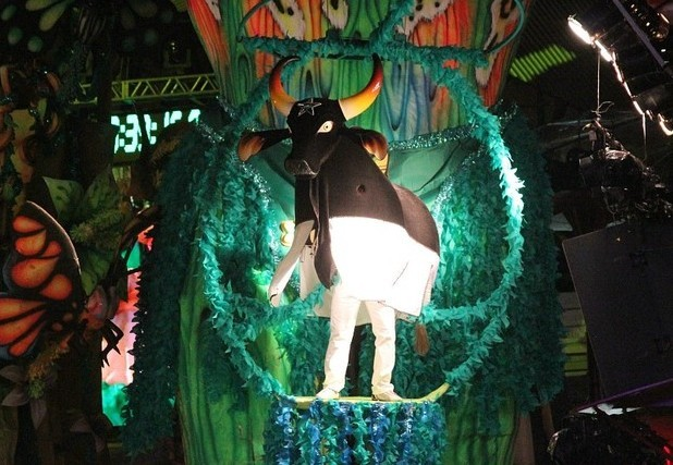 Boi-bumbá Caprichoso celebra seu centenário em 2013 (Foto: Frank Cunha/ G1 AM)
