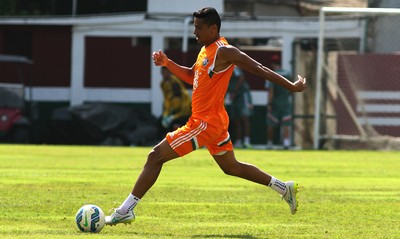 cícero, fluminense (Foto: Nelson Perez/Fluminense FC)