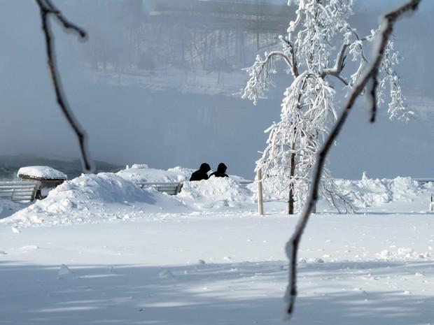 Neve nas Cataratas do Niágara (Foto: Carolyn Thompson/AP)