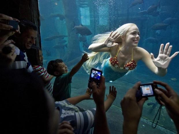 Mirella Ferraz durante uma de suas apresentações em aquários (Foto: Nelson Almeida/Arquivo Pessoal)