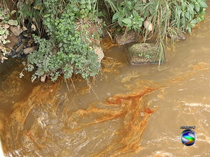 Vazamento de óleo atingiu o Sul do RJ na segunda-feira (6 de maio) (Foto: Reprodução/TV Rio Sul)