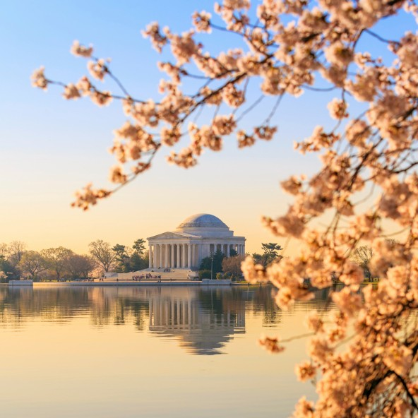 National Mall; Washington DC; Estados Unidos (Foto: Thinkstock)