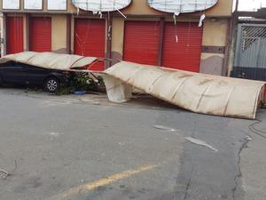 Diversas quedas de árvores e de lonas foram registradas em Salto (Foto: Sara Caprioli/TEM Você)