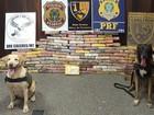 Cães farejadores encontram 131 kg de droga em caminhão em MT