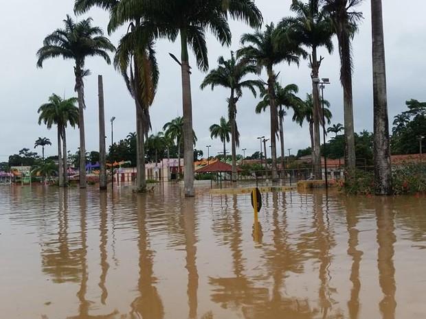 Mais de 600 famílias estão desabrigadas em Brasiléia  (Foto: Salustiano Costa/Arquivo Pessoal)