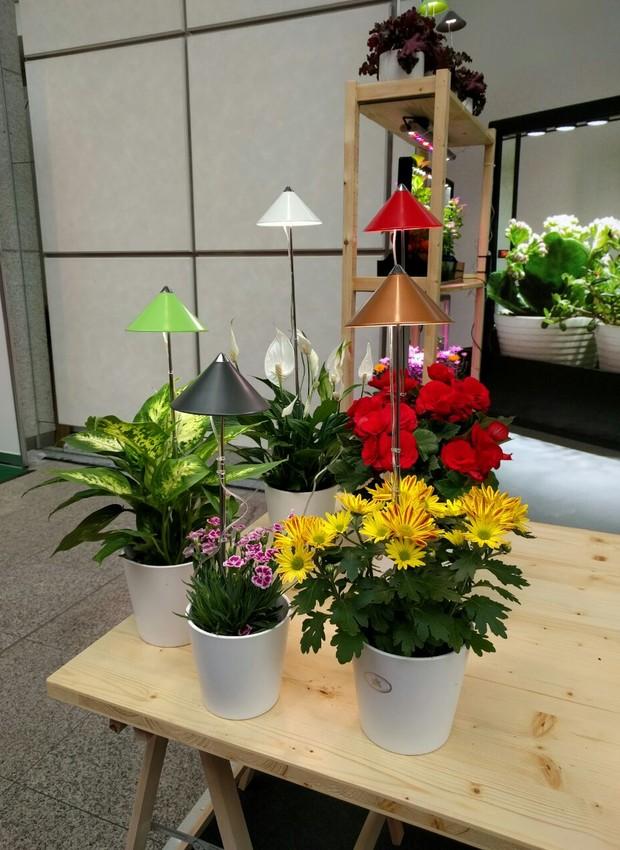 A marca alemã Venso EcoSolutions lançou uma linha de lâmpadas para auxiliar o cultivo de plantas em ambientes internos (Foto: Stéphanie Durante)