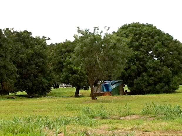 Barraco erguido em área de Brasília; DF tem maior déficit habitacional entre as dez maiores regiões metropolitanas do país (Foto: Isabella Formiga/G1)