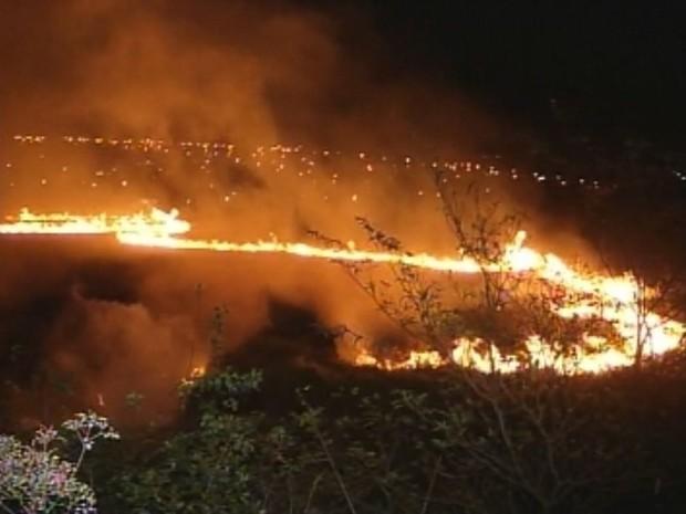 Área de três hectares foia tingida em Ourinhos (Foto: Reprodução / TV TEM)