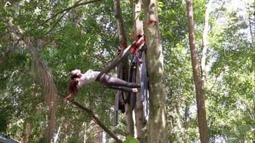Conheça o tipo de ioga praticado na árvore