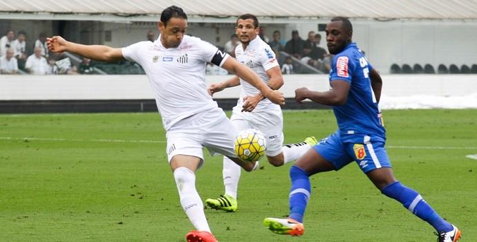 Ricardo Oliveira Santos x Cruzeiro (Foto: FLAVIO HOPP/RAW IMAGE/ESTADÃO CONTEÚDO)