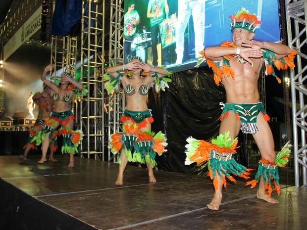 Festa teve diversas apresentações de boi-bumbá (Foto: Gabriel Machado/G1 AM)