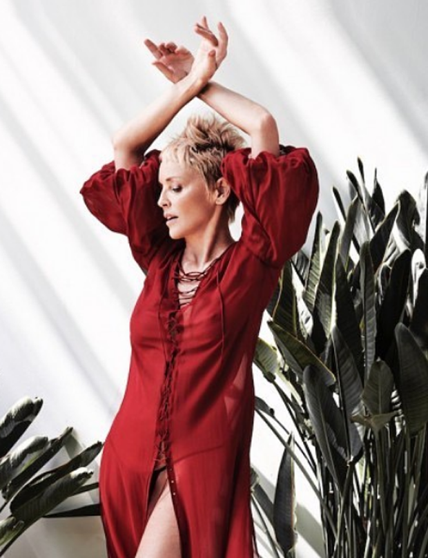 Sharon Stone (Foto: Reprodução Instagram)