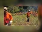 Bombeiros tentam há 7 dias controlar incêndio no sudeste do Pará