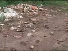 Moradores sofrem com mau cheiro provocado por descarte de ossos