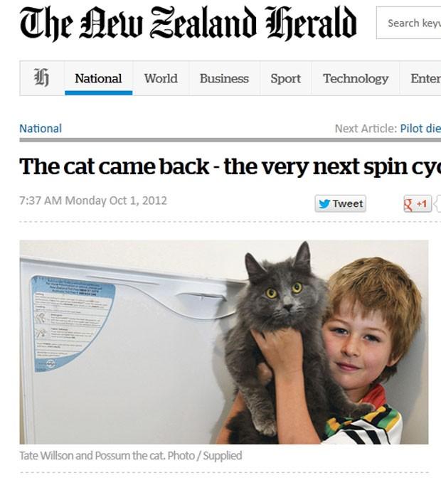 Gato sobreviveu a um ciclo de 55 minutos na máquina de lavar roupa. (Foto: Reprodução/NZ Herald)