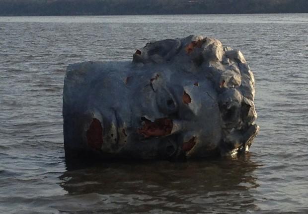 Objeto foi visto boiando no rio Hudson por equipe de remo (Foto:  Marist College/Matthew Lavin/AP)