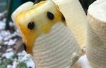 Picolé de Maracujá com Iogurte