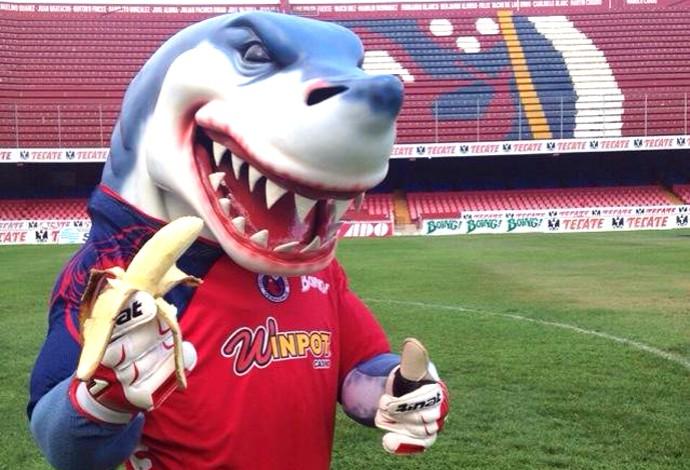 Mascote do Tiburones Rojos posa para campanha de apoio a Ronaldinho (Foto: Divulgação )