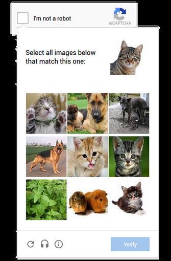 Novo sistema do CAPTCHA vai usar reconhecimento de imagens para identificar humanos e robôs (foto: Reprodução/Google) (Foto: Novo sistema do CAPTCHA vai usar reconhecimento de imagens para identificar humanos e robôs (foto: Reprodução/Google))