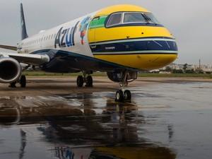 Avião com marca de Senna (Foto: AFP)