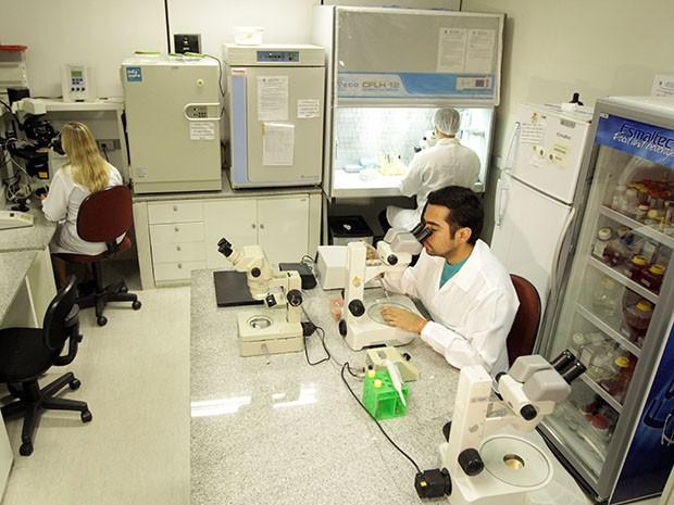 O novo curso de Veterinária será beneficiado com equipamentos propícios para o aprendizado (Foto: Ares Soares/Unifor)