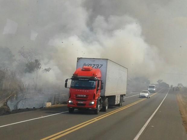 Fogo atinge área próximo a BR-343 em Campo Maior (Foto: Patrícia Andrade/G1)