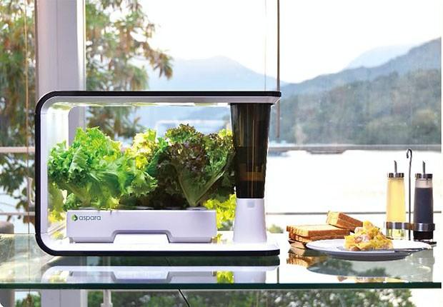 Horta conectada: conheça 3 produtos high tech para cultivar hortaliças (Foto: Divulgação)