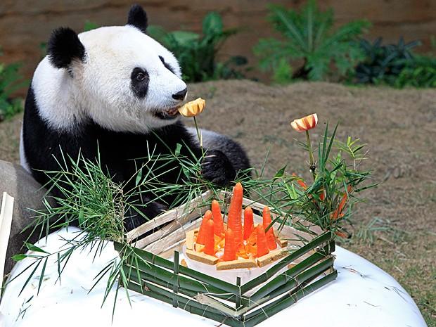 Panda fareja o banquete em comemoração ao seu oitavo aniversário na Malásia (Foto: AP Photo/Lai Seng Sin)