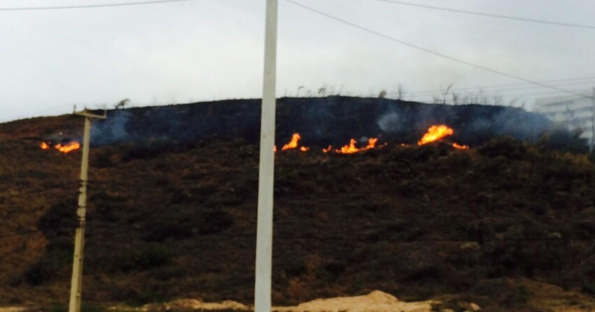 Vegetação pega fogo na margem da Avenida Litorânea em São ... - Globo.com