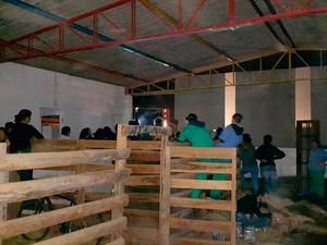 Voluntários passaram a madrugada cuidando dos animais em São Roque (Foto: Divulgação/Vista-se.com.br)