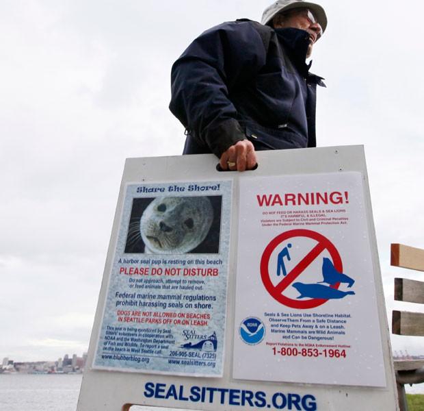 ONG Seal Sitters promove campanha de proteção à vida marinha, após filhote de foca morrer depois de ser retirado da praia por mulher. (Foto: Elaine Thompson/Associated Press)