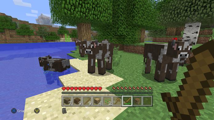 Pescaria e criações garantem XP rápido em Minecraft (Foto: Reprodução/Murilo Molina)